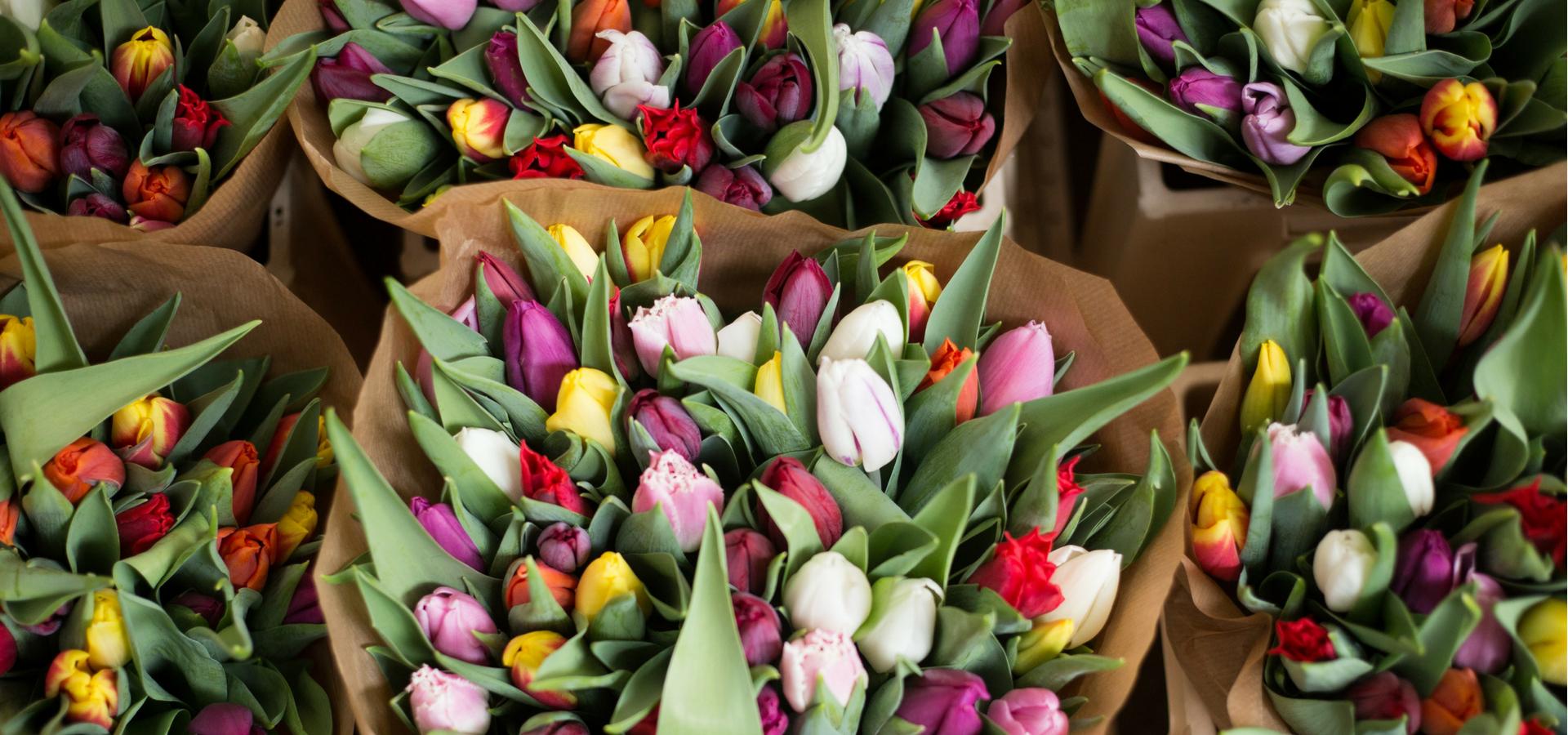 Nottingham Florist